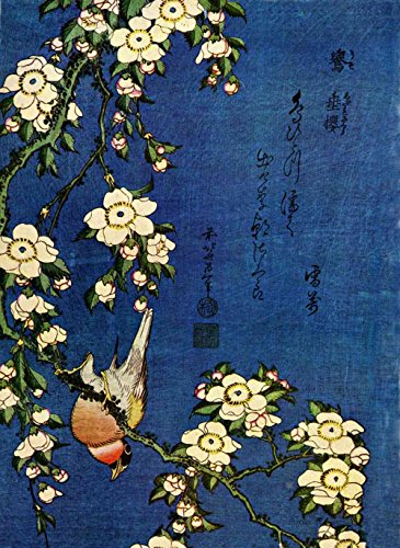The Museum Outlet - Hokusai - Bullfinch and drooping cherry - Poster Print Online Buy (40 X 50 Inch)