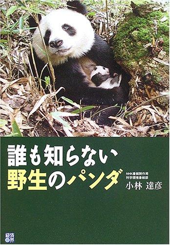 誰も知らない野生のパンダ (RYU SELECTION)