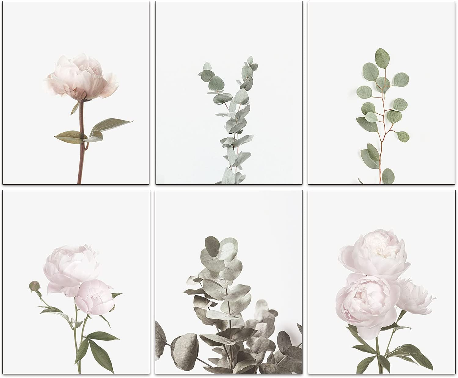 """Wall Art Pink Peonies Flower Eucalyptus Leaves Wall Art Set Of 6 Modern Wall Decor Bathroom Office Living Room Girls Bedroom Wall Decor No Frame (8""""X10""""Canvas Picture)"""