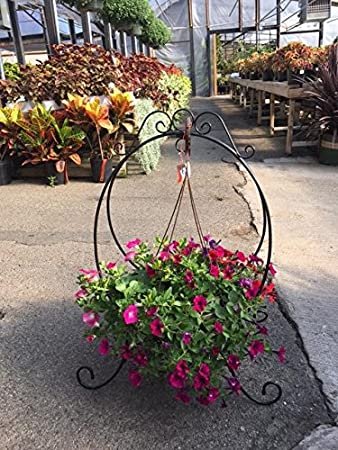 Ordinaire Oval Dual Purpose Plant Stand