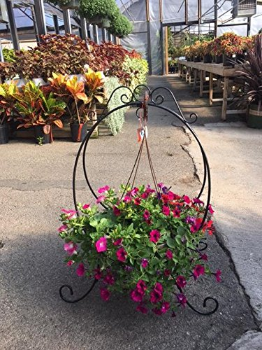 Oval Folding Metal Plant Stand