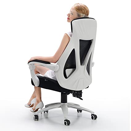 Hbada Ergonomic Office Chair - High Back Adjustable Desk Chair - Mesh Swivel Computer Chair with  sc 1 st  Amazon.com & Amazon.com: Hbada Ergonomic Office Chair - High Back Adjustable Desk ...
