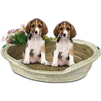 Suppet Paja de Paja Nido Perrera Gato litera Transpirable Perro Caliente Cama sofá Perro Suministros para Mascotas, XL: Amazon.es: Productos para mascotas