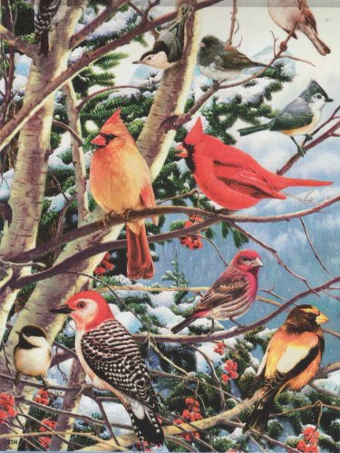 Songbirds in the Snow – 28 Inch By 40 Inch Large Decorative Flag Review