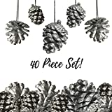 "Pine Cone Ornaments - Set of 40 - 1 1/2"" Silver Painted Christmas Pinecone Ornaments with String"