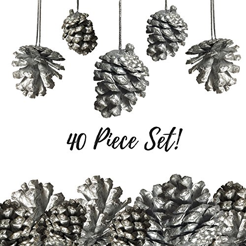 Pine Cone Ornaments - Set of 40 - 1 1/2