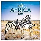 Wildlife Calendar - Calendars 2018 - 2019 Wall Calendar - Wild Africa Wall Calendar by Presco Group