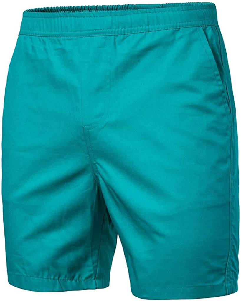 Wyl/_id Lion of Judah Flag Men with Pocket Quick Dry Beach Shorts Waist Elastic Design Swim Trunks Swimwear Home Shorts