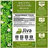 Bacopa Monnieri Capsules ( Brahmi ) -1000 mg