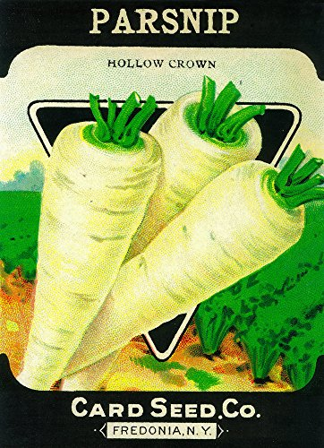 Parsnip Seed Packet 1477 (12x18 SIGNED Print Master Art Print - Wall Decor Poster)
