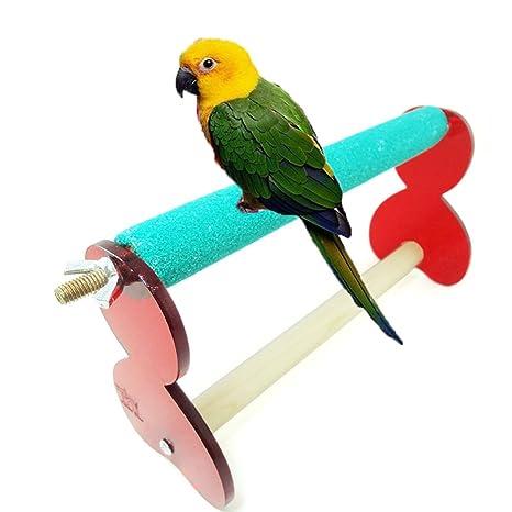Molienda de huella de madera percas para pájaro loro Guacamayo ...