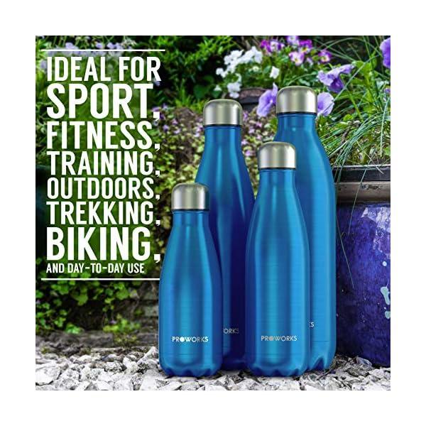 Proworks Bottiglia Acqua in Acciaio Inox, Senza BPA Vuoto Isolato Borraccia Termica in Metallo per Bevande Calde per 12 Ore & Fredde 24 Ore, Borraccia Sport, Lavoro e Palestra - 350ml/500ml/750ml/1L 7 spesavip