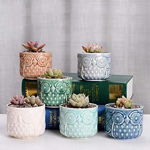 6 Pack Ceramic Succulent Planter Pot with Drainage,Planting Pot Flower Pots,Small Planter Pots for Mini Plant Ceramic Flowing Glaze Base Serial Set with Holes for Home Office Garden Decor (Owl B)