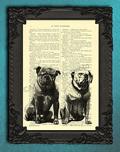 - American bulldog artwork, dog art print on original antique dictionary page