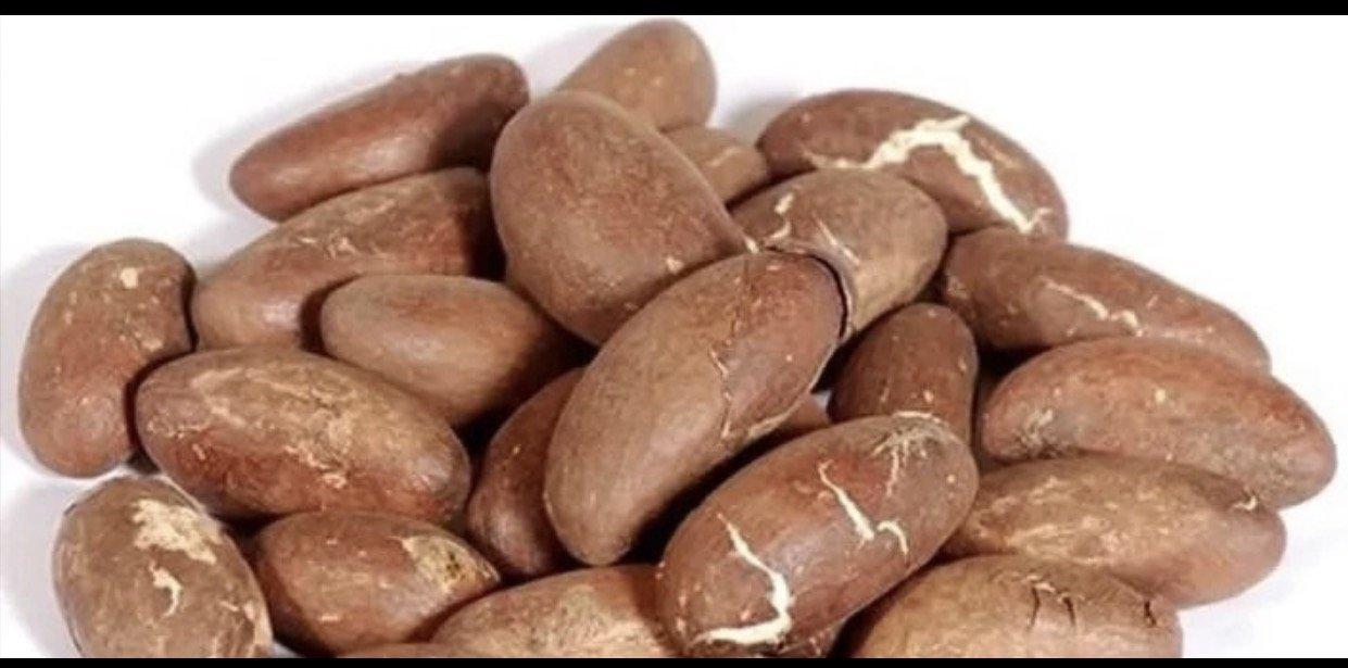 African Bitter Kola Nuts 0.5lbs