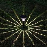 voona Solar Pathway Lights Outdoor