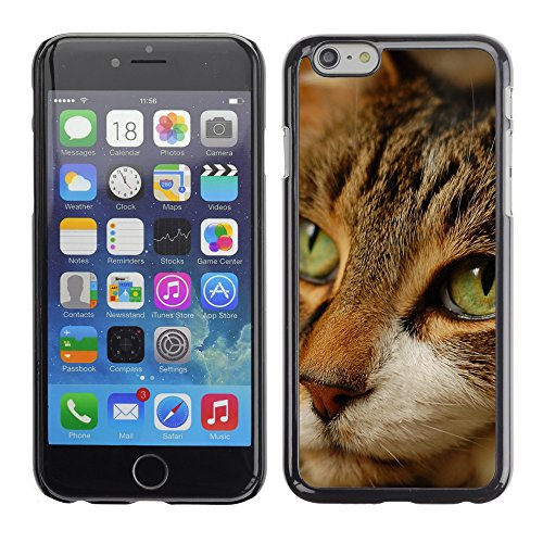 "Premio Sottile Slim Cassa Custodia Case Cover Shell // V00003092 chat rêver // Apple iPhone 6 6S 6G 4.7"""