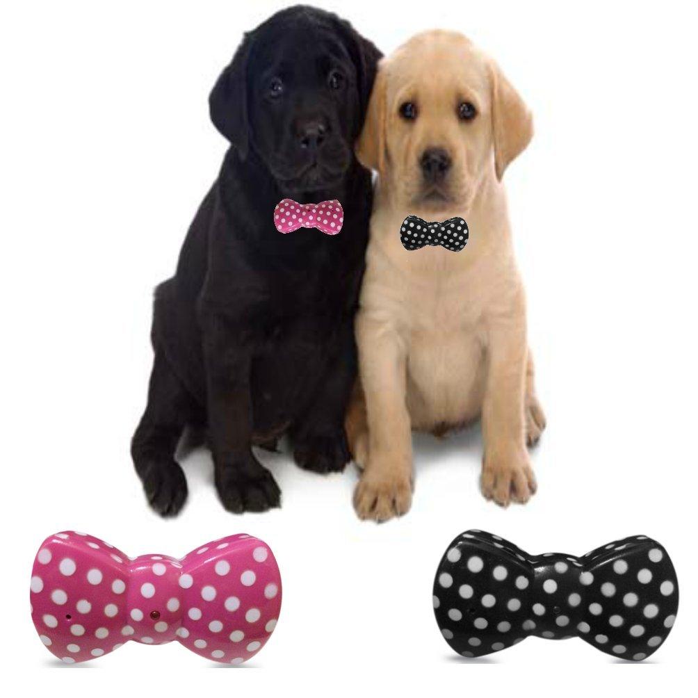 Black Small Black Small BowWow Classic Design No Bark Dog Collar (Small Dog 15lbs to 150lbs) Anti Bark Control Collar Solution and Warning Beep System. Black w White Pokadots