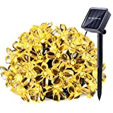 Qedertek Solar String Lights, 21ft 50 LED Fairy Flower Blossom Christmas Decorative Lighting for Outdoor, Home, Lawn, Garden, Patio, Party and Holiday Decorations (Warm White)