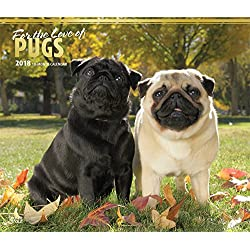 For The Love Of Pugs 2018 14 X 12 Inch Monthly Deluxe Wall Calendar With Foil