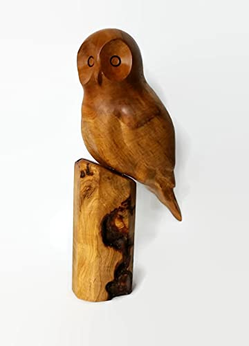 Amazon.com: hand carved owl wood carving unique one of a kind bird