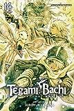 Tegami Bachi, Vol. 14