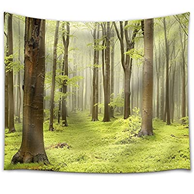 Incredible Object of Art, That's 100% USA Made, Tree Forest on a Green Field with Sunlight Peeking Through