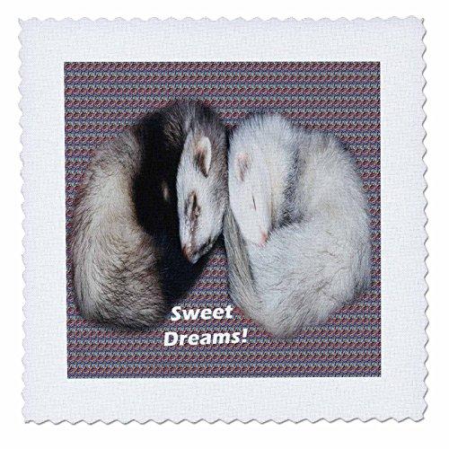 (Sandy Mertens Animals - Sleeping Ferrets - 14x14 inch quilt square (qs_17286_5))