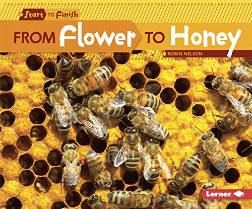 Finish Flower (From Flower to Honey (Start to Finish: Nature's Cycles))