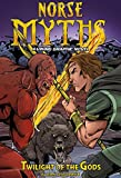 Twilight of the Gods (Norse Myths: A Viking Graphic Novel)