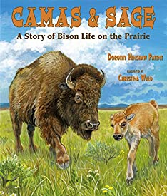 Camas & Sage: A Story of Bison Life on the Prairie