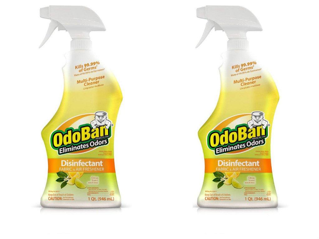 OdoBan Ready-to-Use 32oz Spray Bottle 2-Pack, Citrus Scent - Odor Eliminator, Disinfectant, Flood Fire Water Restoration