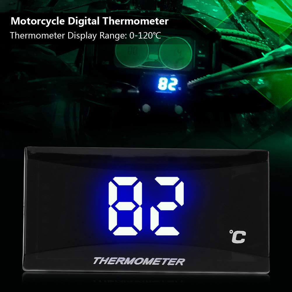 Medidor de la temperatura del agua del instrumento del term/ómetro digital de la motocicleta Indicador de luz azul Gorgeri Term/ómetro digital del moto