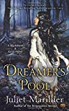 Dreamer's Pool (Blackthorn & Grim)