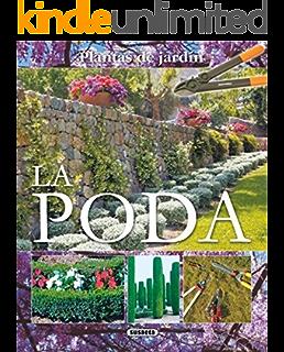 Huerto Ecologico Del Convento (Pequeñas Joyas): Amazon.es: Susaeta ...