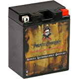 Pirate Battery YTX14AHL-BS High Performance Power Sports Battery