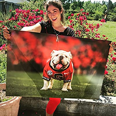 UGA Georgia Bulldogs: UGA X Mascot Photo Art Poster - Extra Large (24