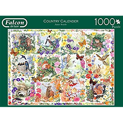Jumbo Spiele 11190 Puzzle Falcon Country Calendar 1000 Pezzi