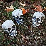 "Halloween Haunters 5"" Plastic Skulls Haunted House Graveyard Party Prop Decorations (Bag of 3) - Scary Plastic Skeleton Head Set"