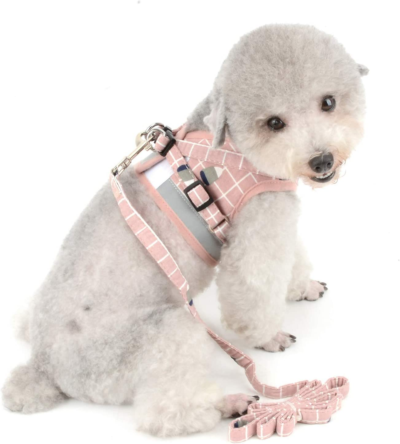SMALLLEE/_LUCKY/_STORE Print Plaid Pet Harness Vest and Leash Set for Small Breed Dog Cat Reflctive Soft Nylon Mesh Padded Jacket 2 D-Ring Buckle Adjustable for Walking Hiking Outdoor Puppy Clothes