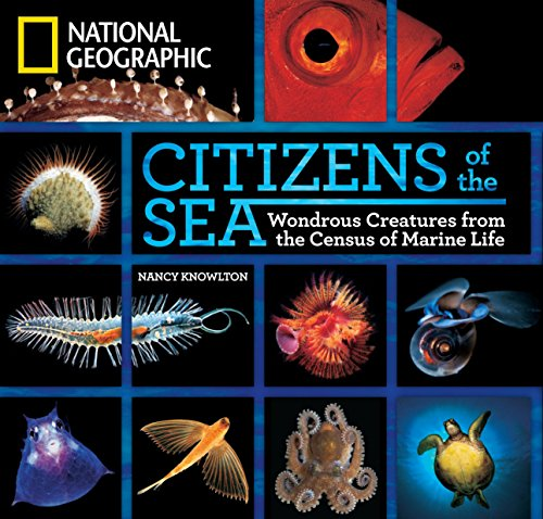 National Geographic underwater photographers and the Census of Marine Life capture the astonishing diversity and the most intriguing organisms in the ocean in this riveting book, by marine scientist Nancy Knowlton.   As you read lively vignettes abou...