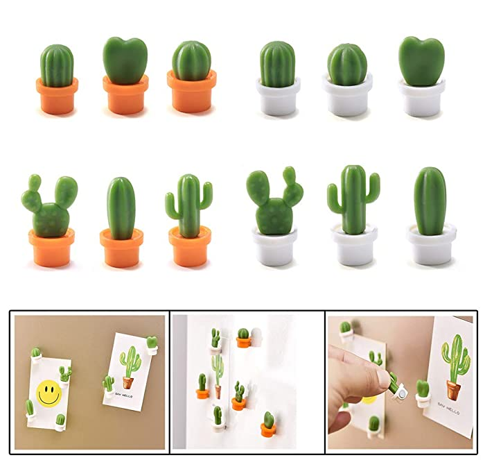 12 Pcs Cute Mini Cactus Refrigerator Magnets,Decorative Fridge Magnet Locker Magnet,Dry Erase Board Magnet,Perfect Fridge Magnets for House Office Personal Use