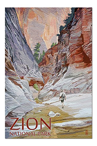 Zion National Park, Utah - Slot Canyon (20x30 Premium 1000 Piece Jigsaw Puzzle, Made in USA!) (Best Slot Canyon Hikes In Utah)