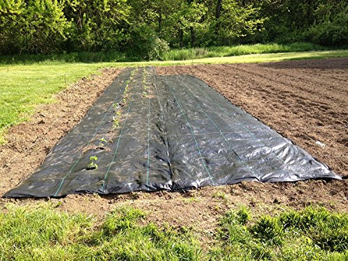 agfabric-easy-plant-weed-block-mulch-weed-barrier-fabric-with-planting-hole-garden-mat-29oz-4x12-hol
