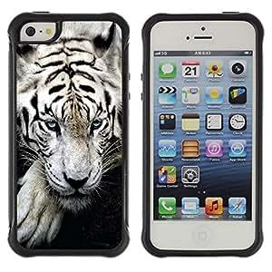 Jordan Colourful Shop@ Tiger Sleepy Cute Animal Ferocious Rugged hybrid Protection Impact Case Cover For iphone 5S CASE Cover ,iphone 5 5S case,iphone5S plus cover ,Cases for iphone 5 5S