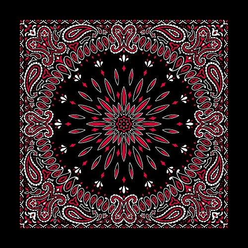Black with Red Circular Burst Paisley Bandana - Single Piece 22x22