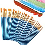 Paint Brush Set, 60 Pieces Nylon Hair Brushes for All Purpose Oil Acrylic Watercolor Painting, 10 Sizes Acrylic Paint Brushes for Artists/Painters / Beginners/Students / Kids