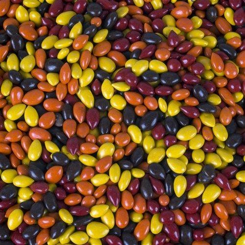 FirstChoiceCandy Fall Mix Sunbursts Chocolate Covered Sunflower Seeds 2 Pound 32 oz Resealable Bag