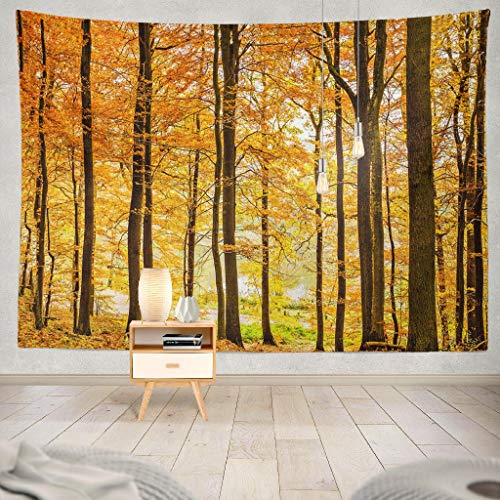 Panorama Wood Woodland Bleach - Kutita Tapestry Wall Hanging Autumn Forest Trees Woodland Landscape Wall Tapestry Home Decorations for Bedroom Living Room Dorm Decor in 80
