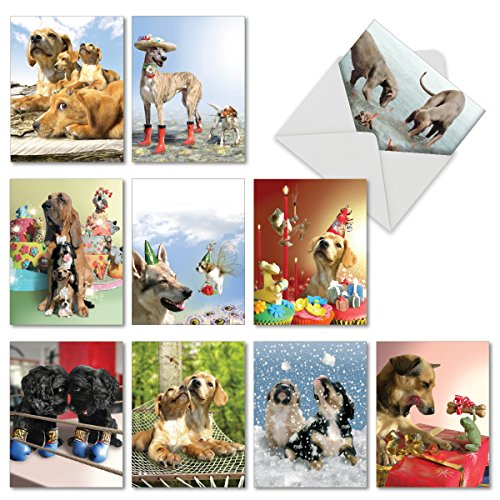10 'Puppy Love' Note Cards with Envelopes 4 x 5.12 inch, Puppy Stationery Set for All Occasions, Assorted Blank Greeting Cards for Baby Showers, Birthdays, Thank You, Holidays M6546OCB